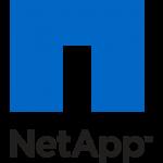 bergt-consulting-partner-netapp